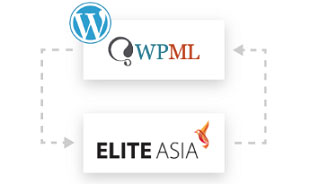 Website Localisation Integration with WPML in Singapore